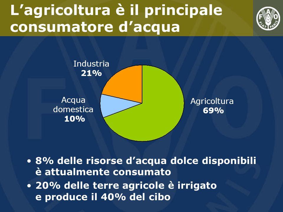 La produttività agricola è cresciuta sensibilmente grazie a: Il miglioramento della gestione dellacqua sia sulle terre a coltura a secco, sia sulle terre irrigate Le tecnologie della rivoluzione verde ma Degradazione delle terre a vocazione estensiva Lultima metà del Secolo scorso