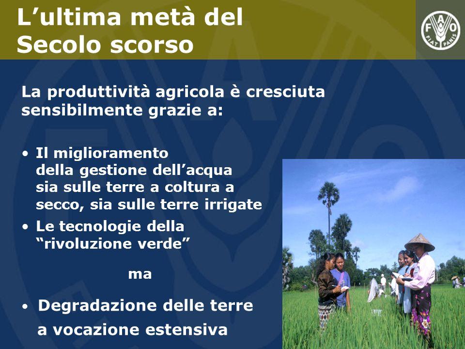 La produttività agricola è cresciuta sensibilmente grazie a: Il miglioramento della gestione dellacqua sia sulle terre a coltura a secco, sia sulle te