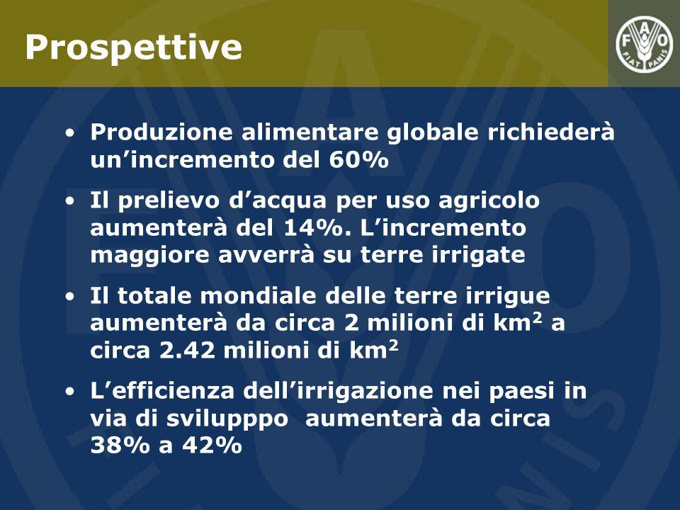 Produzione alimentare globale richiederà unincremento del 60% Il prelievo dacqua per uso agricolo aumenterà del 14%. Lincremento maggiore avverrà su t