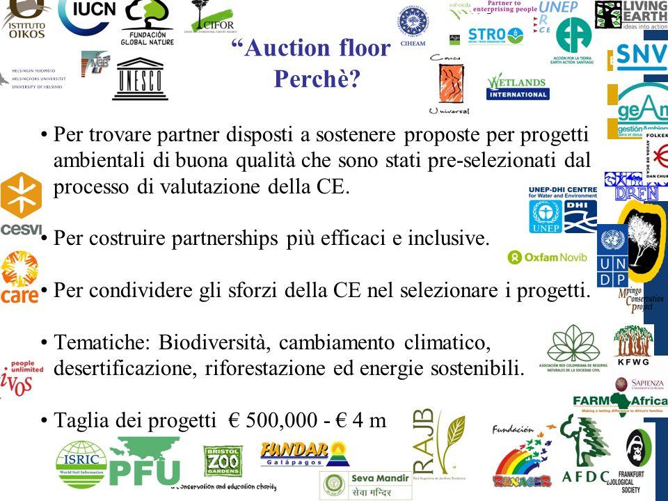 EuropeAid Auction floor Perchè? Per trovare partner disposti a sostenere proposte per progetti ambientali di buona qualità che sono stati pre-selezion