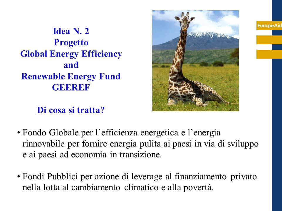 EuropeAid Idea N. 2 Progetto Global Energy Efficiency and Renewable Energy Fund GEEREF Di cosa si tratta? Fondo Globale per lefficienza energetica e l
