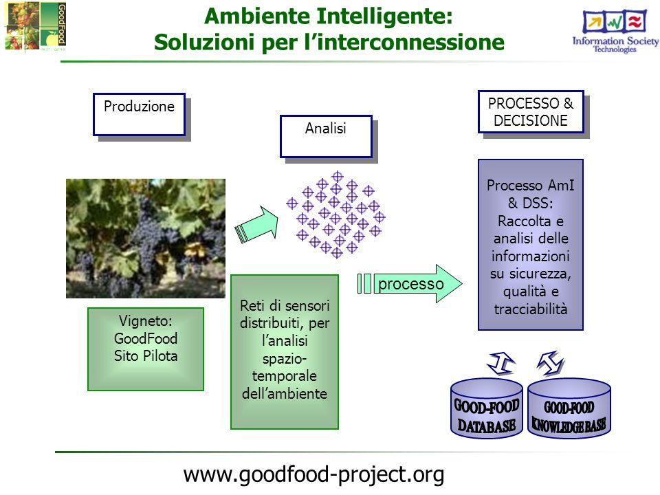 www.goodfood-project.org Vigneto: GoodFood Sito Pilota Reti di sensori distribuiti, per lanalisi spazio- temporale dellambiente processo Ambiente Inte