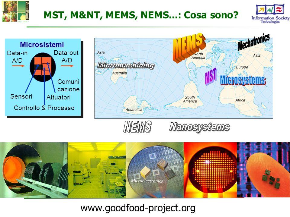 www.goodfood-project.org MST, M&NT, MEMS, NEMS...: Cosa sono?Microsistemi Data-out A/D Comuni cazione Attuatori Controllo & Processo Sensori Data-in A