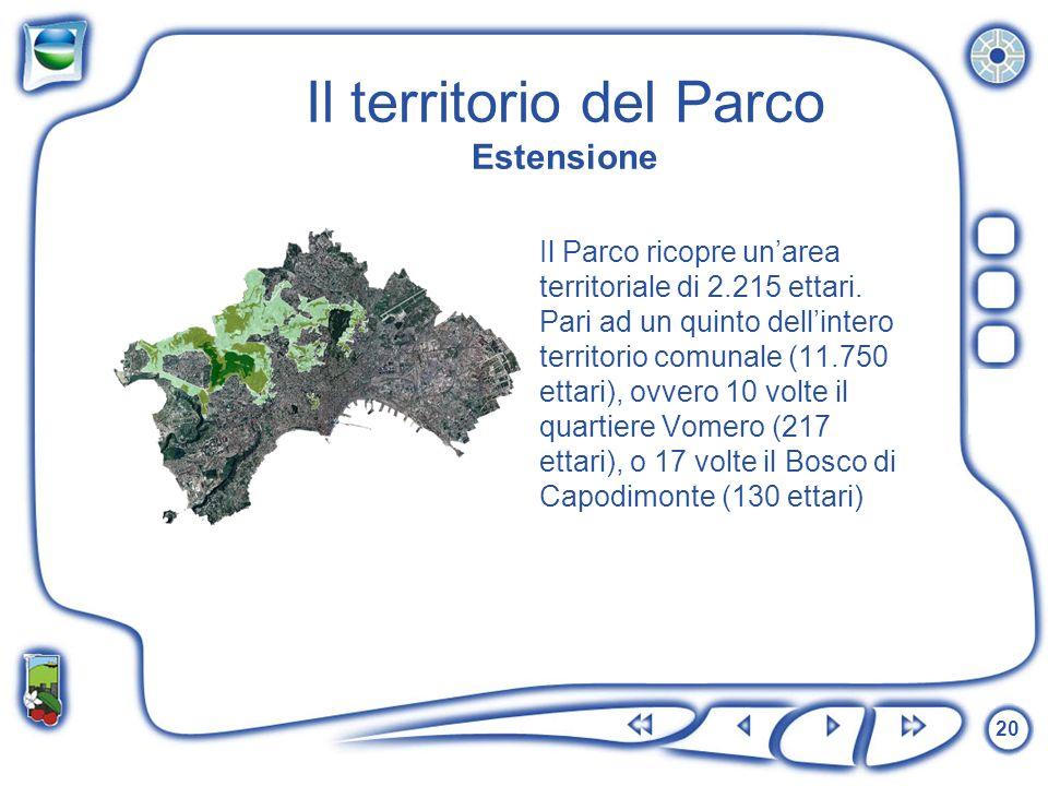 20 Il territorio del Parco Estensione Il Parco ricopre unarea territoriale di 2.215 ettari. Pari ad un quinto dellintero territorio comunale (11.750 e