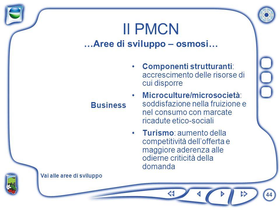 44 Il PMCN …Aree di sviluppo – osmosi… Business Componenti strutturanti: accrescimento delle risorse di cui disporre Microculture/microsocietà: soddis