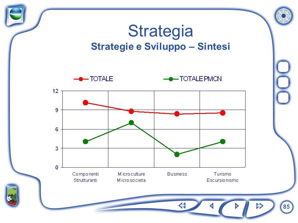 85 Strategia Strategie e Sviluppo – Sintesi