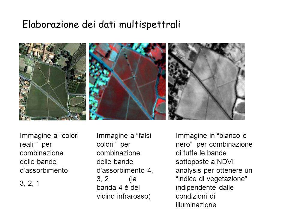 Immagine a colori reali per combinazione delle bande dassorbimento 3, 2, 1 Immagine a falsi colori per combinazione delle bande dassorbimento 4, 3, 2