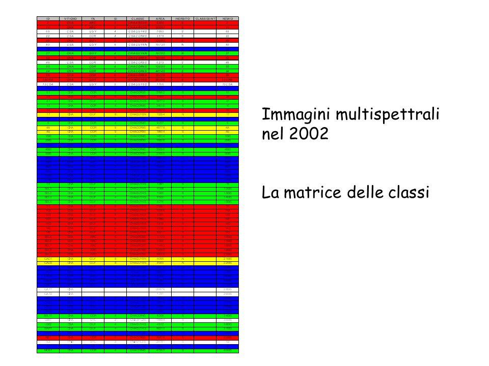 Immagini multispettrali nel 2002 La matrice delle classi