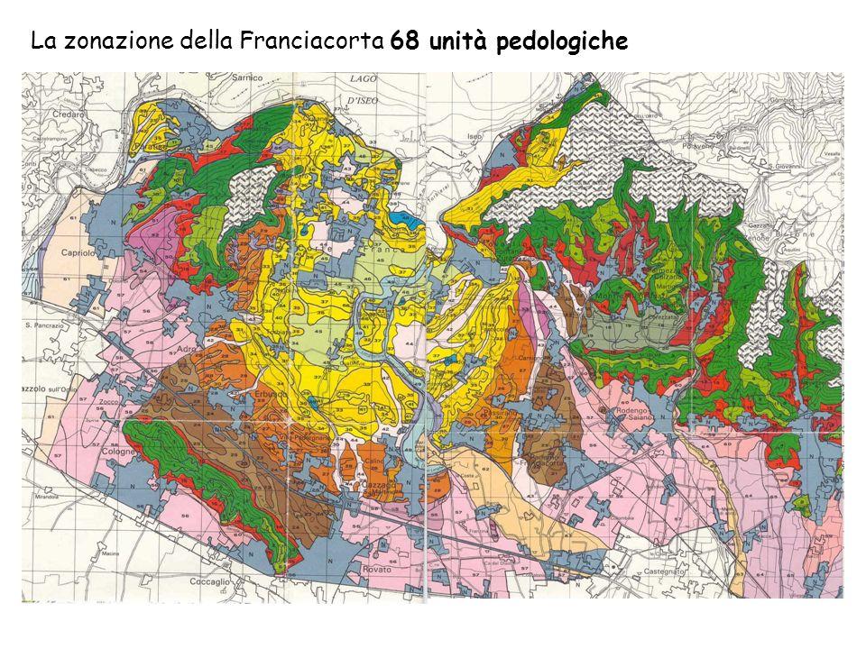 La zonazione della Franciacorta 68 unità pedologiche