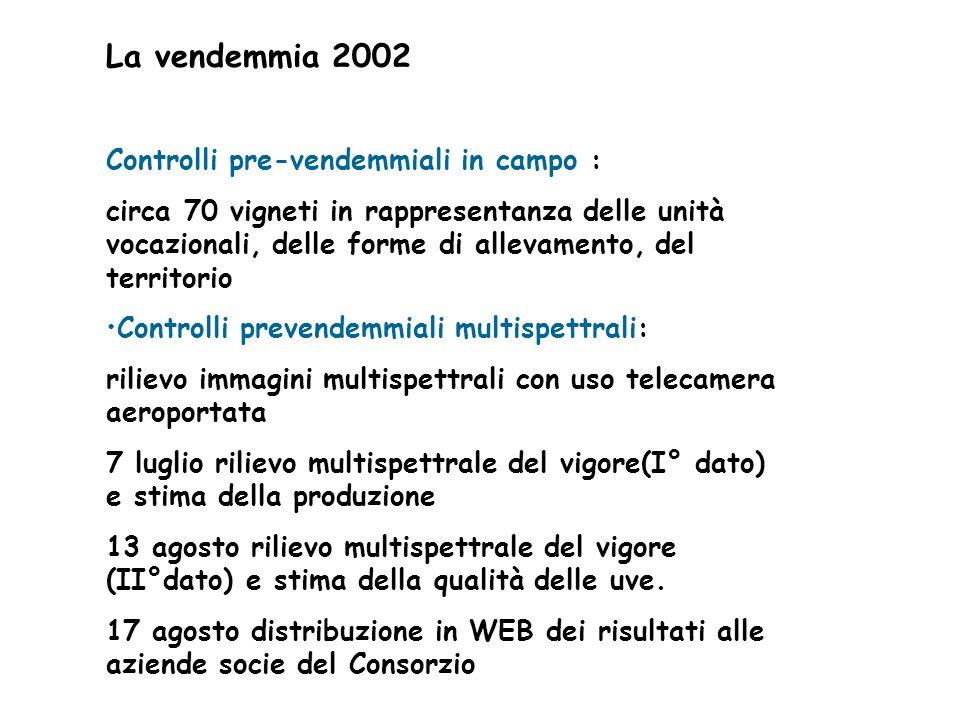 La vendemmia 2002 Controlli pre-vendemmiali in campo : circa 70 vigneti in rappresentanza delle unità vocazionali, delle forme di allevamento, del ter