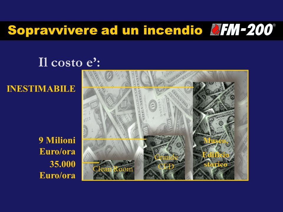Il costo e: Sopravvivere ad un incendio 9 Milioni Euro/ora INESTIMABILE 35.000 Euro/ora Clean Room Grande CED Museo, Edificio storico