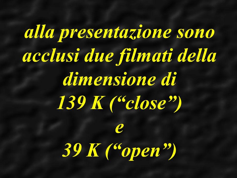 alla presentazione sono acclusi due filmati della dimensione di 139 K (close) e 39 K (open)