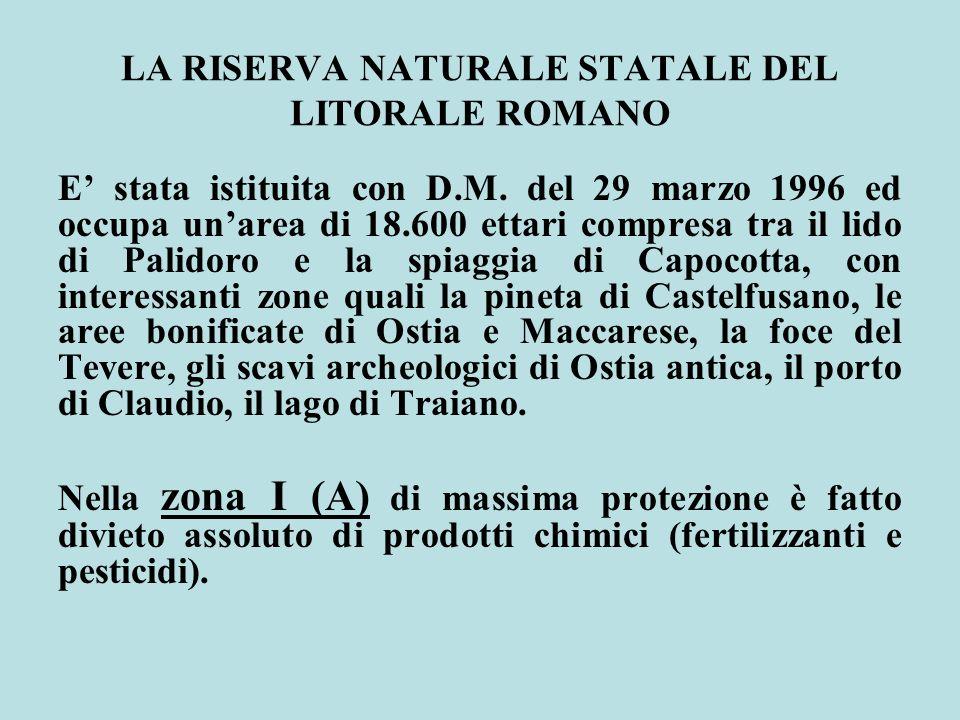 LA RISERVA NATURALE STATALE DEL LITORALE ROMANO E stata istituita con D.M. del 29 marzo 1996 ed occupa unarea di 18.600 ettari compresa tra il lido di