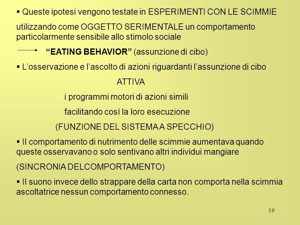 19 Queste ipotesi vengono testate in ESPERIMENTI CON LE SCIMMIE utilizzando come OGGETTO SERIMENTALE un comportamento particolarmente sensibile allo s