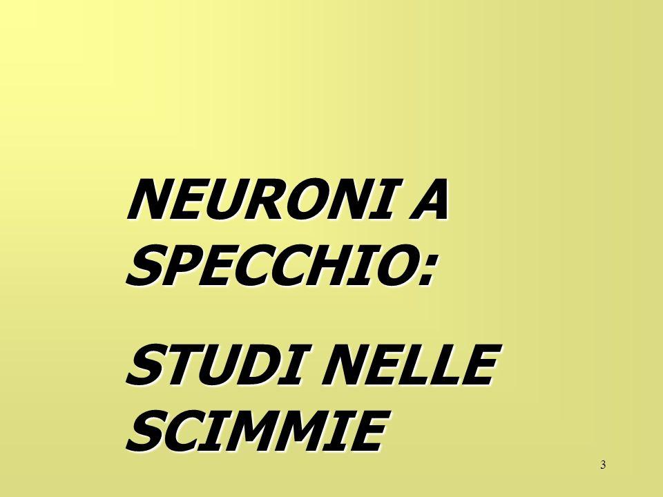 3 NEURONI A SPECCHIO: STUDI NELLE SCIMMIE