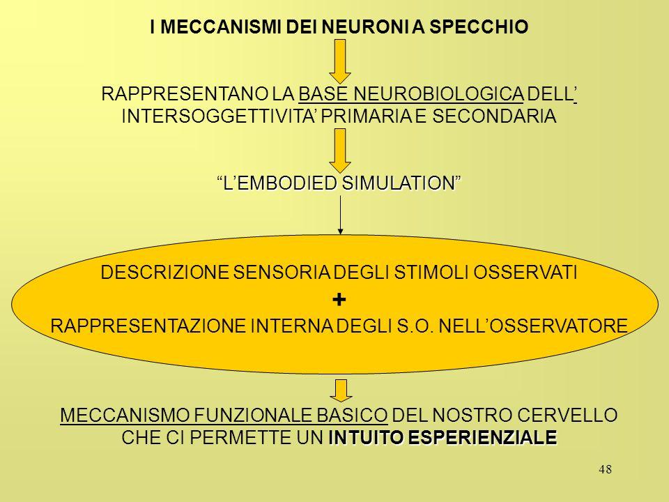 48 I MECCANISMI DEI NEURONI A SPECCHIO RAPPRESENTANO LA BASE NEUROBIOLOGICA DELL INTERSOGGETTIVITA PRIMARIA E SECONDARIA LEMBODIED SIMULATIONLEMBODIED