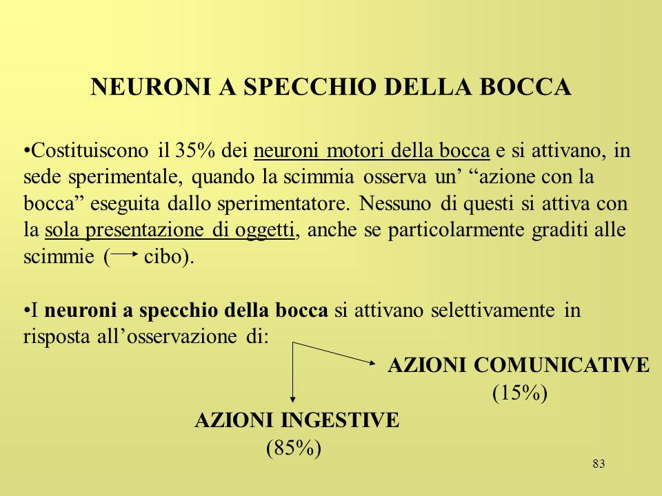 83 NEURONI A SPECCHIO DELLA BOCCA Costituiscono il 35% dei neuroni motori della bocca e si attivano, in sede sperimentale, quando la scimmia osserva u