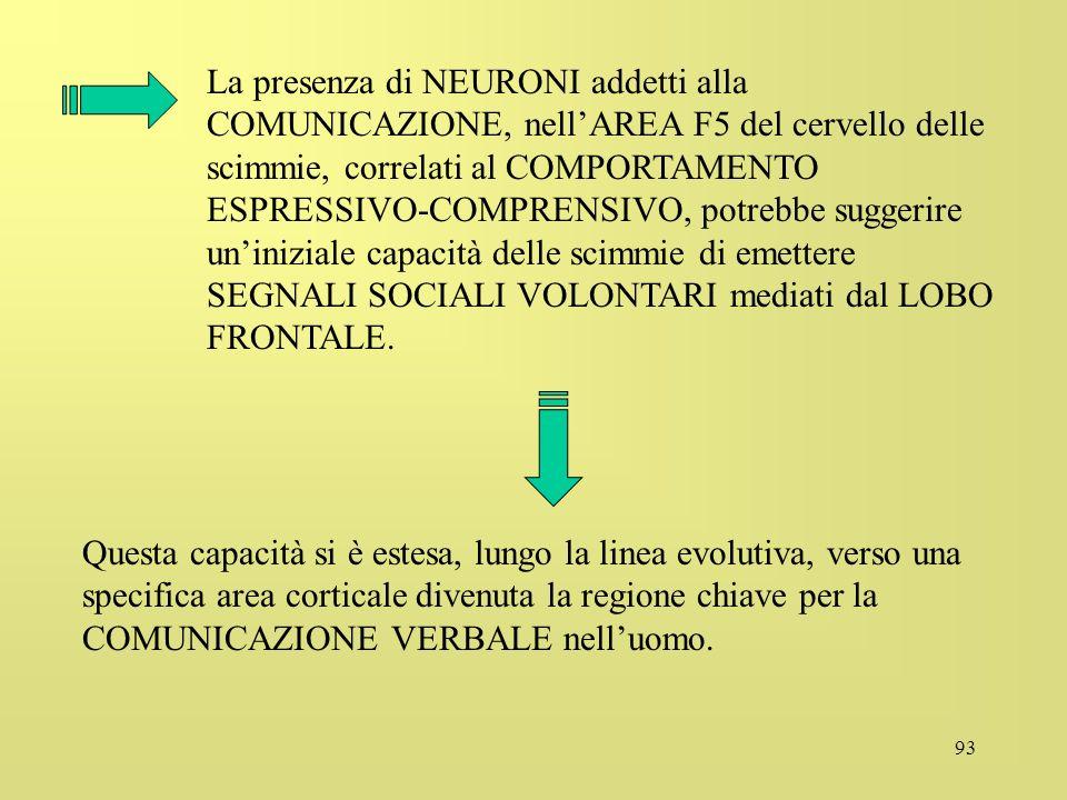 93 La presenza di NEURONI addetti alla COMUNICAZIONE, nellAREA F5 del cervello delle scimmie, correlati al COMPORTAMENTO ESPRESSIVO-COMPRENSIVO, potre