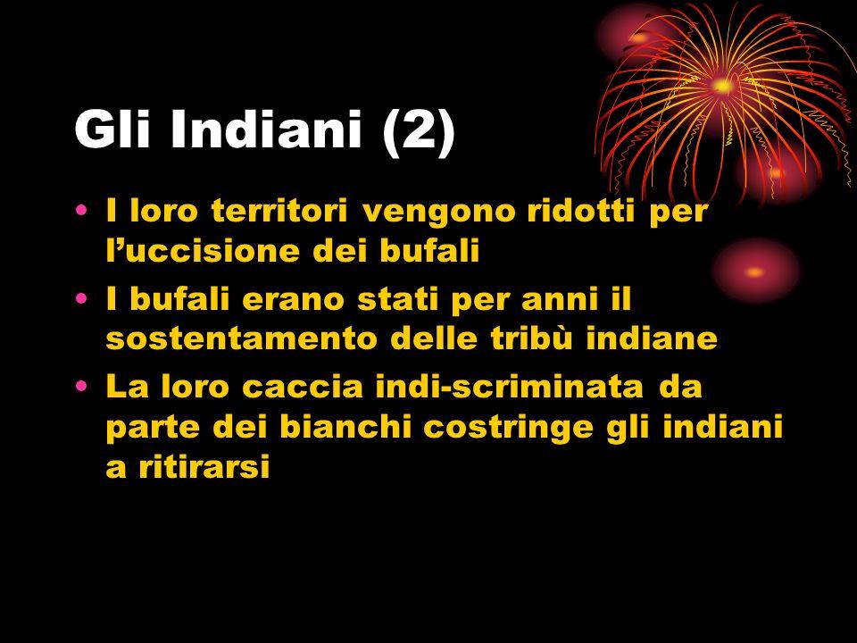 Gli Indiani (2) I loro territori vengono ridotti per luccisione dei bufali I bufali erano stati per anni il sostentamento delle tribù indiane La loro caccia indi-scriminata da parte dei bianchi costringe gli indiani a ritirarsi