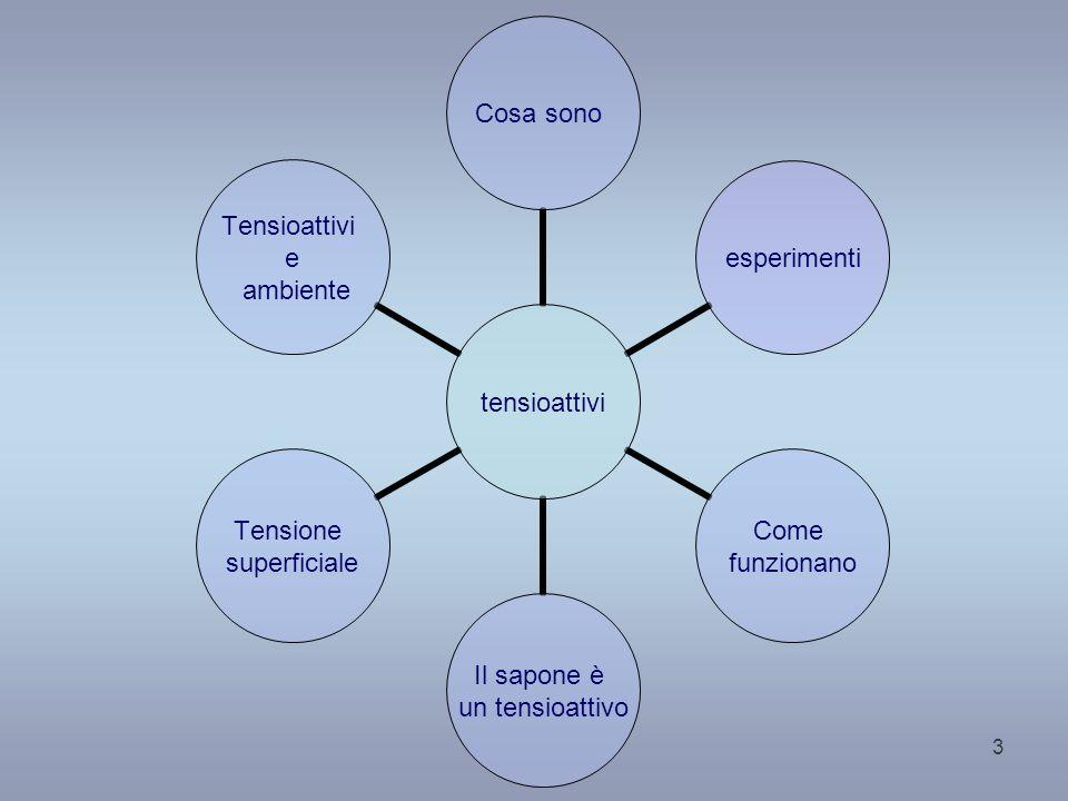 4 PREREQUISITI Conoscere la struttura della materia Sapere cosè una soluzione Sapere cosè unemulsione Sapere cosè una molecola polare Sapere cosè la tensione superficiale