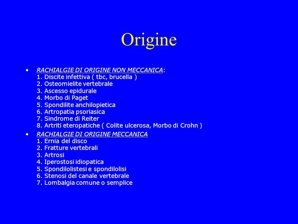 Origine RACHIALGIE DI ORIGINE NON MECCANICA: 1. Discite infettiva ( tbc, brucella ) 2. Osteomielite vertebrale 3. Ascesso epidurale 4. Morbo di Paget