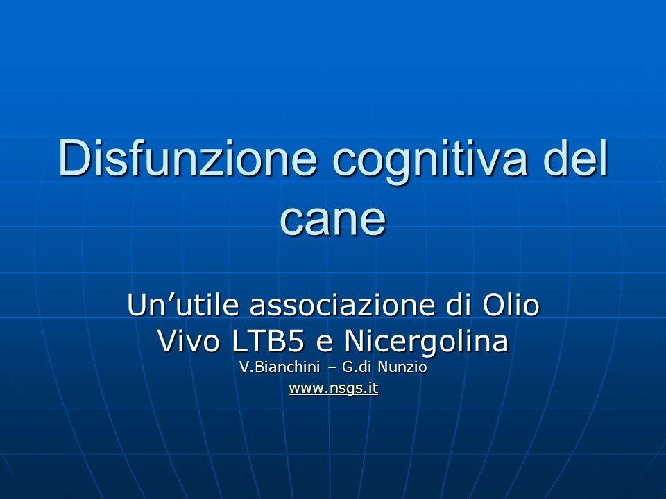 Disfunzione cognitiva del cane Unutile associazione di Olio Vivo LTB5 e Nicergolina V.Bianchini – G.di Nunzio www.nsgs.it
