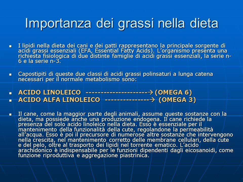 Importanza dei grassi nella dieta I lipidi nella dieta dei cani e dei gatti rappresentano la principale sorgente di acidi grassi essenziali (EFA, Esse