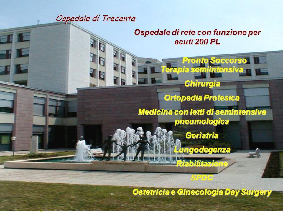 FINAL EVENT - Venice, 23rd & 24th January 2006 6 Ospedale di rete con funzione per acuti 200 PL Terapia semiintensiva Chirurgia Ortopedia Protesica Me