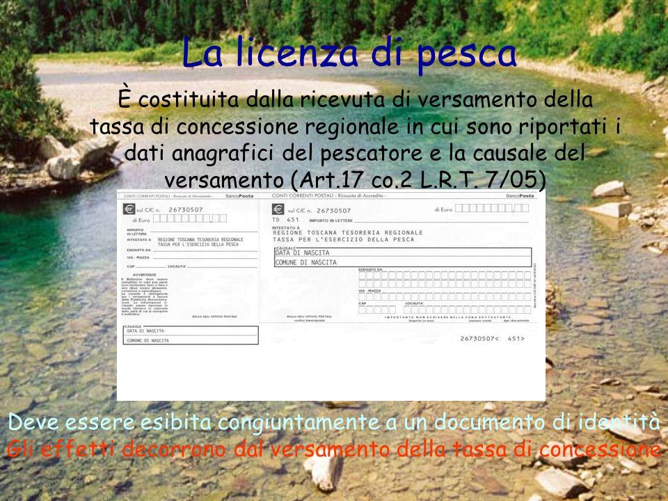 La licenza di pesca È costituita dalla ricevuta di versamento della tassa di concessione regionale in cui sono riportati i dati anagrafici del pescatore e la causale del versamento (Art.17 co.2 L.R.T.