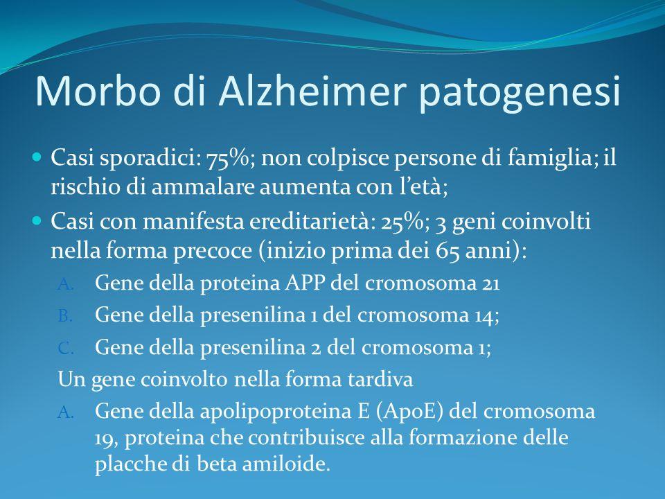 Morbo di Alzheimer patogenesi Casi sporadici: 75%; non colpisce persone di famiglia; il rischio di ammalare aumenta con letà; Casi con manifesta eredi