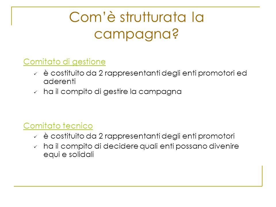 Comè strutturata la campagna? Comitato di gestione è costituito da 2 rappresentanti degli enti promotori ed aderenti ha il compito di gestire la campa