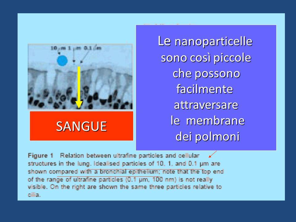 SANGUE Le nanoparticelle sono così piccole che possono che possonofacilmenteattraversare le membrane le membrane dei polmoni dei polmoni