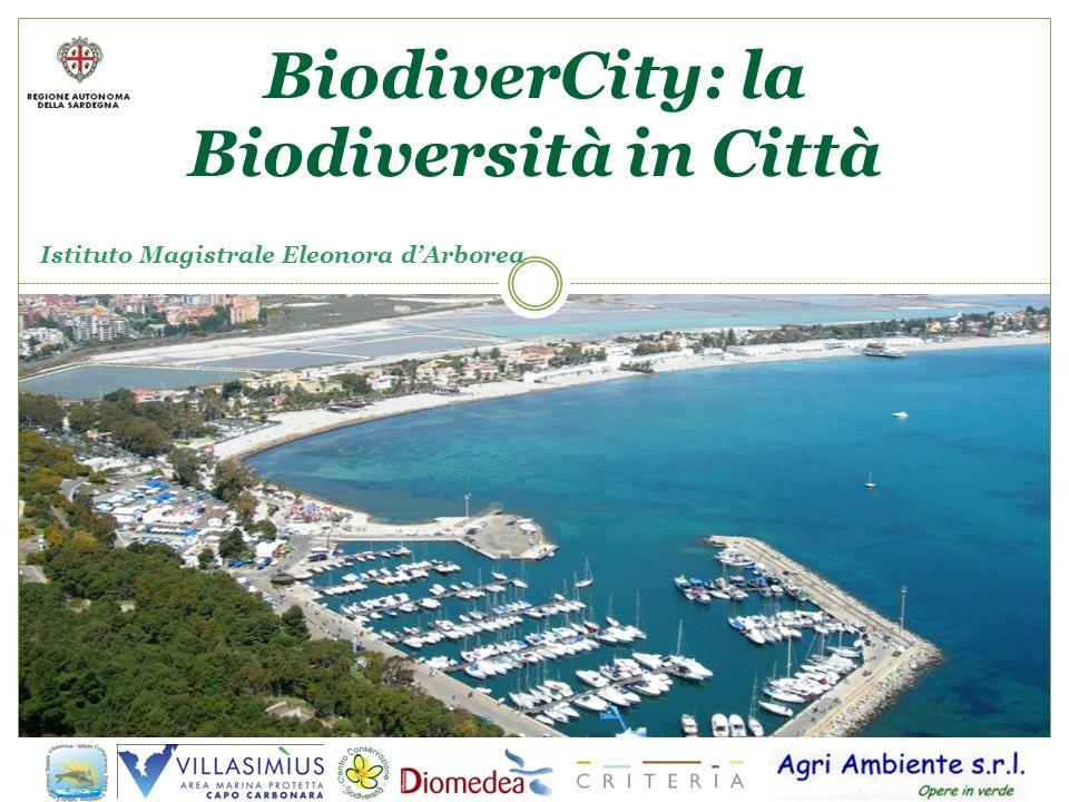 Istituto Magistrale Eleonora dArborea BiodiverCity: la Biodiversità in Città