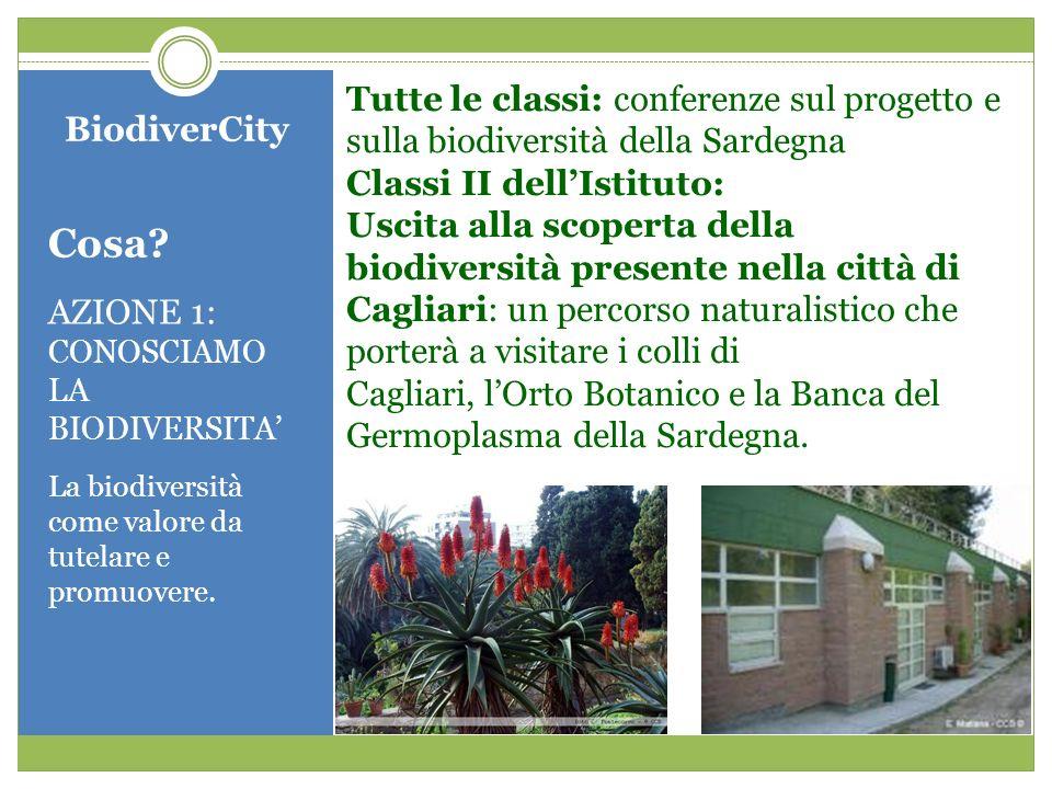 BiodiverCity Cosa? AZIONE 1: CONOSCIAMO LA BIODIVERSITA La biodiversità come valore da tutelare e promuovere. Tutte le classi: conferenze sul progetto