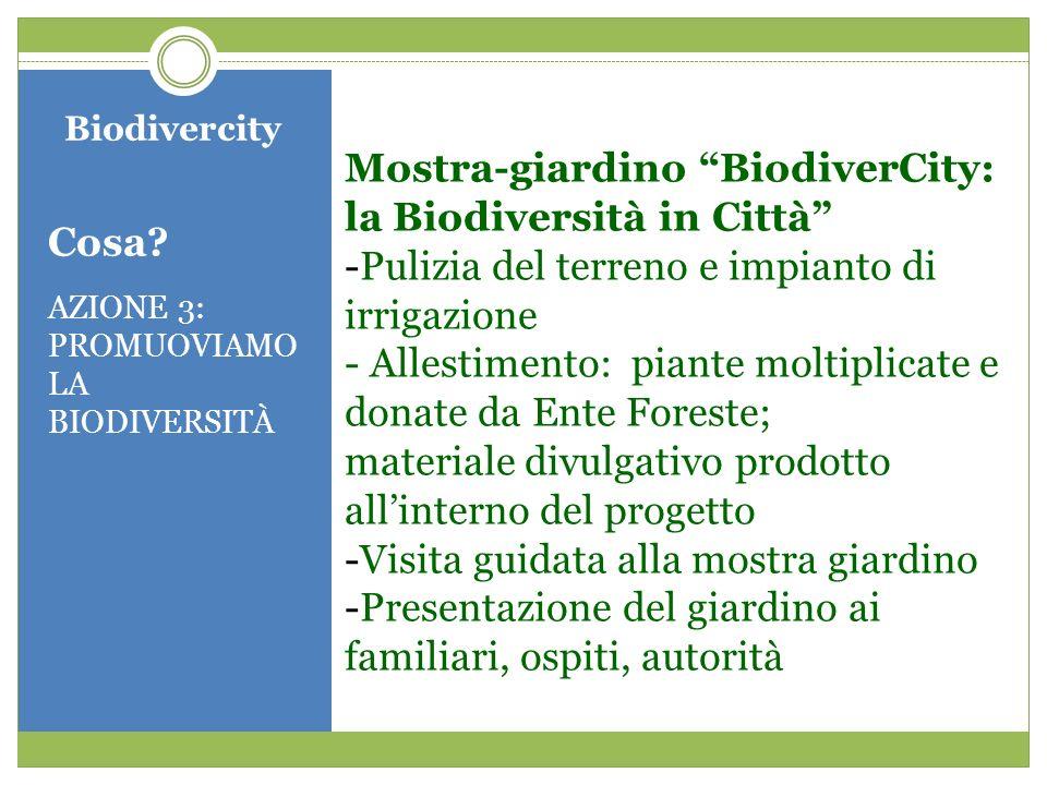 Biodivercity Cosa? AZIONE 3: PROMUOVIAMO LA BIODIVERSITÀ Mostra-giardino BiodiverCity: la Biodiversità in Città -Pulizia del terreno e impianto di irr
