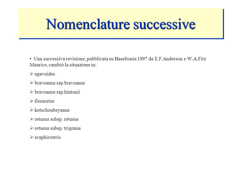 Nomenclature successive Una successiva revisione, pubblicata su Haseltonia 1997 da E.F.Anderson e W.A.Fitz Maurice, cambiò la situazione in: agavoides