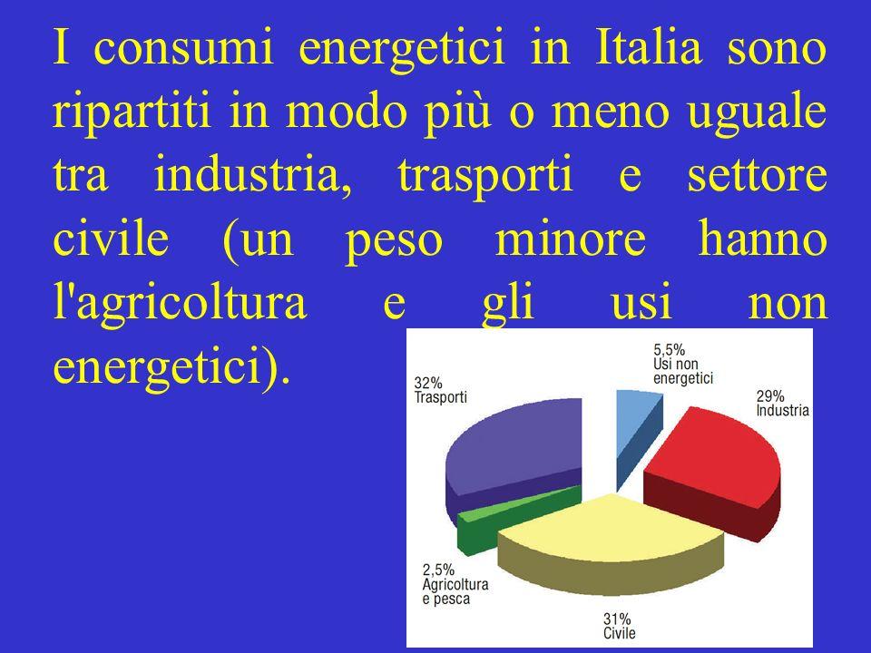 I consumi energetici in Italia sono ripartiti in modo più o meno uguale tra industria, trasporti e settore civile (un peso minore hanno l'agricoltura