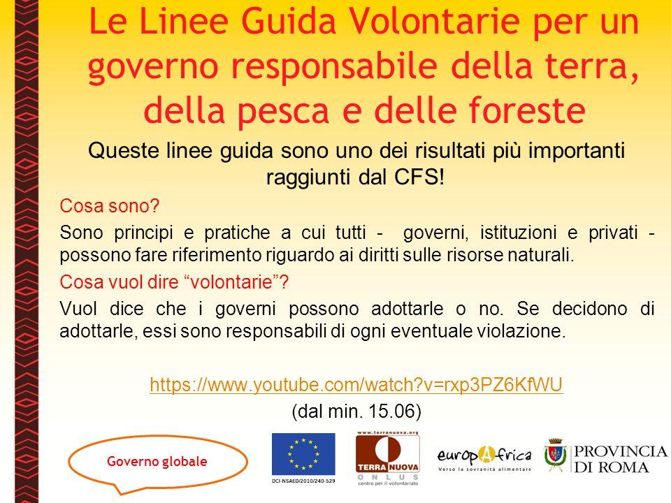 Le Linee Guida Volontarie per un governo responsabile della terra, della pesca e delle foreste Queste linee guida sono uno dei risultati più important