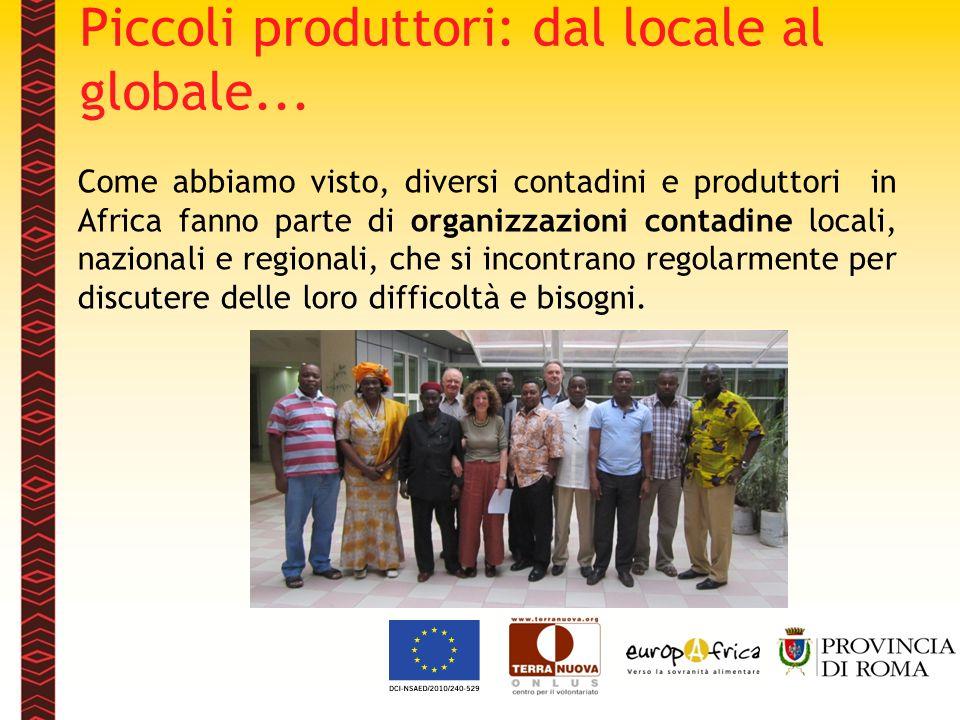 Come abbiamo visto, diversi contadini e produttori in Africa fanno parte di organizzazioni contadine locali, nazionali e regionali, che si incontrano