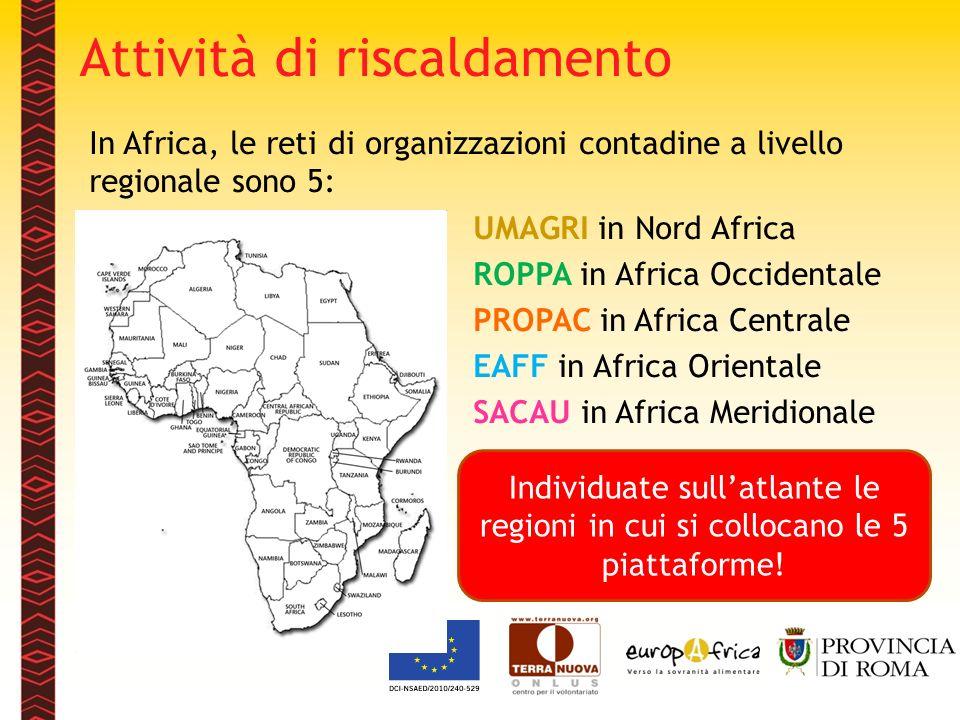 Attività di riscaldamento In Africa, le reti di organizzazioni contadine a livello regionale sono 5: UMAGRI in Nord Africa ROPPA in Africa Occidentale