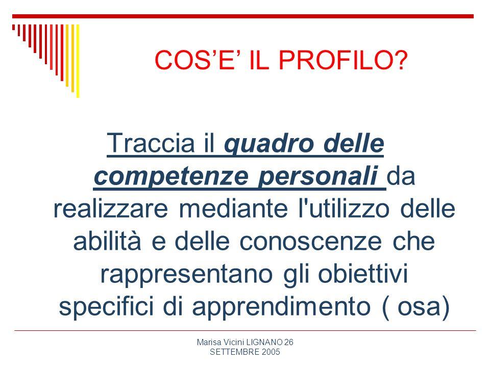 Marisa Vicini LIGNANO 26 SETTEMBRE 2005 COSE IL PROFILO? Traccia il quadro delle competenze personali da realizzare mediante l'utilizzo delle abilità