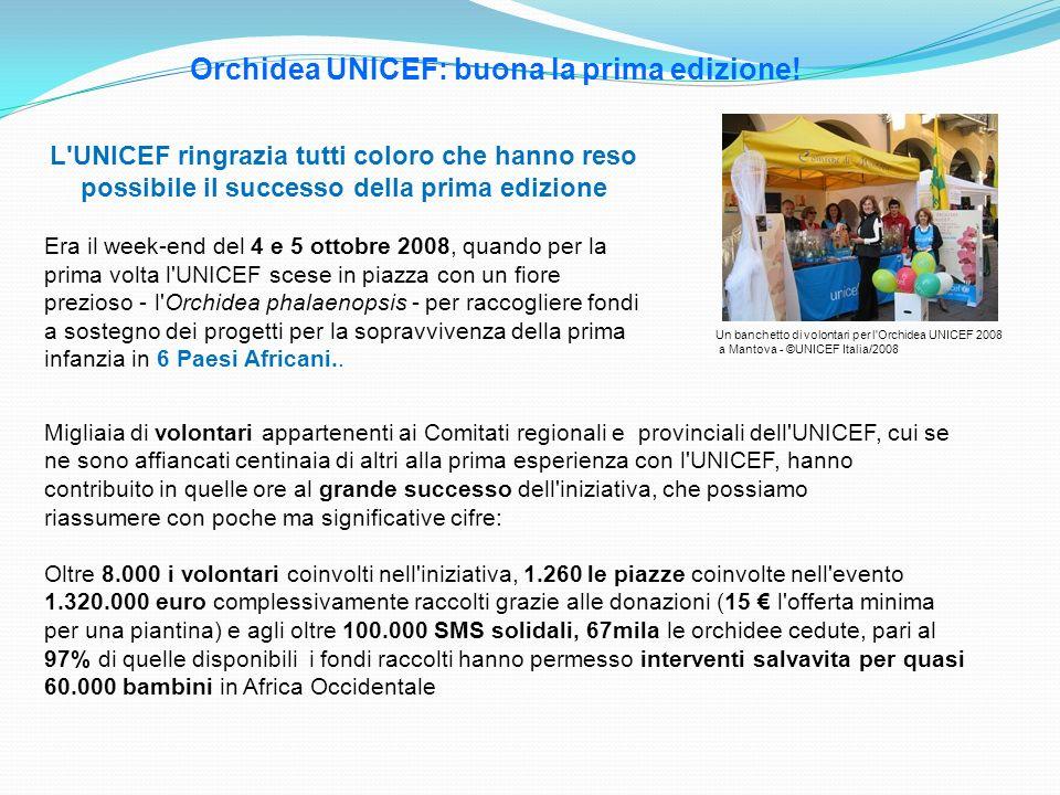 Orchidea UNICEF: buona la prima edizione! Un banchetto di volontari per l'Orchidea UNICEF 2008 a Mantova - ©UNICEF Italia/2008 L'UNICEF ringrazia tutt