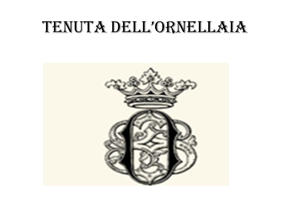 Dislocazione delle vigne Ornellaia