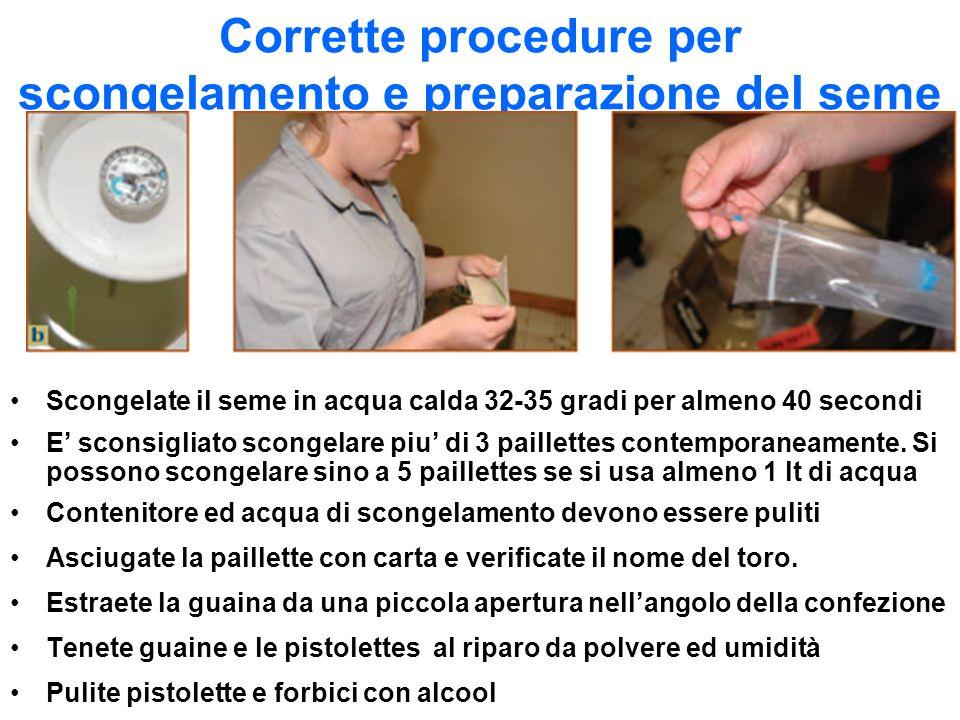 Corrette procedure per scongelamento e preparazione del seme Scongelate il seme in acqua calda 32-35 gradi per almeno 40 secondi E sconsigliato sconge