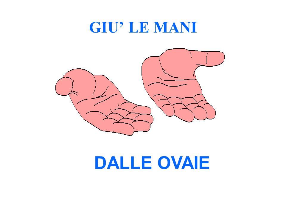 GIU LE MANI DALLE OVAIE