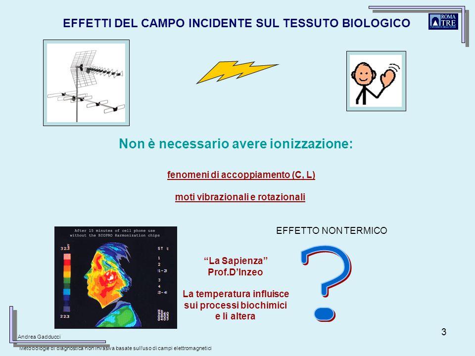 3 EFFETTI DEL CAMPO INCIDENTE SUL TESSUTO BIOLOGICO fenomeni di accoppiamento (C, L) moti vibrazionali e rotazionali Non è necessario avere ionizzazio