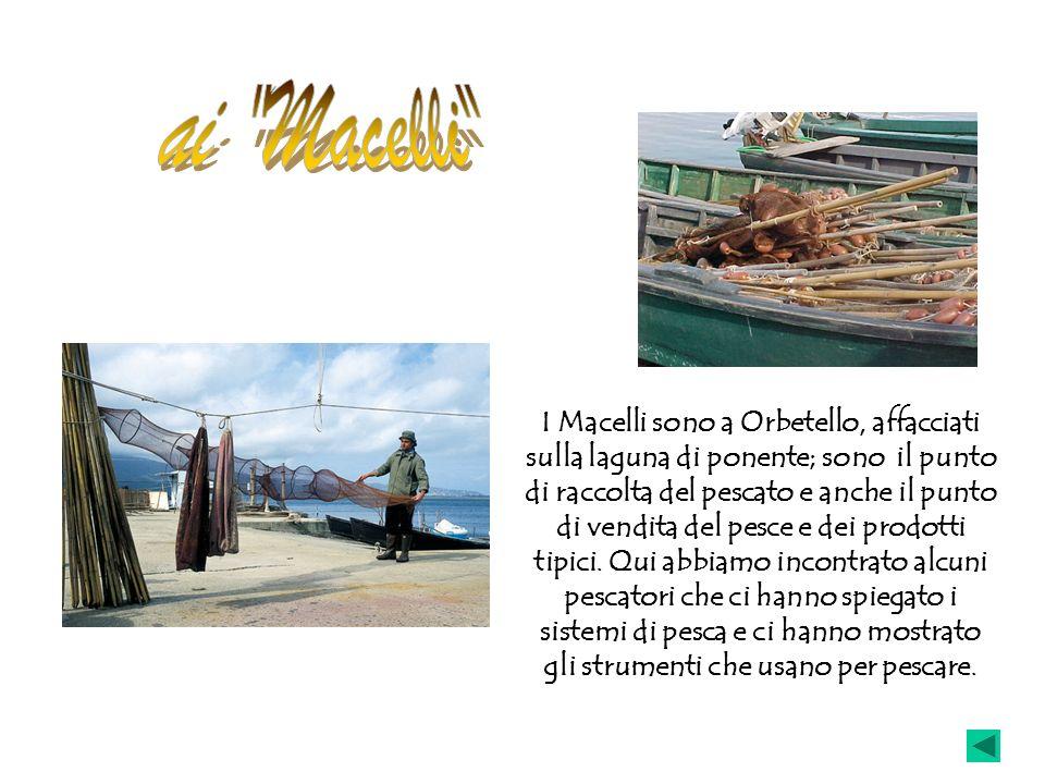 I Macelli sono a Orbetello, affacciati sulla laguna di ponente; sono il punto di raccolta del pescato e anche il punto di vendita del pesce e dei prod