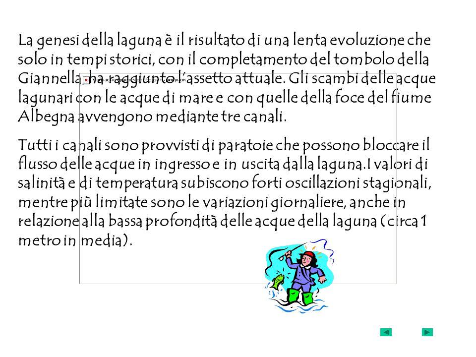 La genesi della laguna è il risultato di una lenta evoluzione che solo in tempi storici, con il completamento del tombolo della Giannella, ha raggiunt
