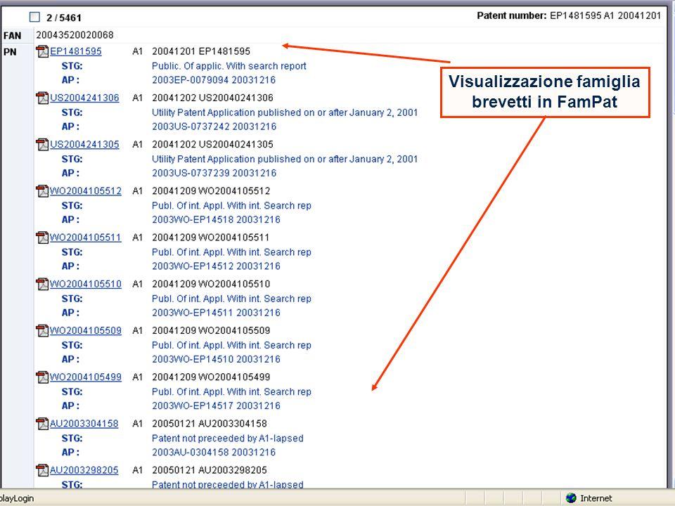 18 Visualizzazione famiglia brevetti in FamPat