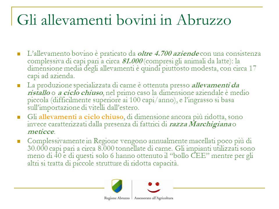 Gli allevamenti bovini in Abruzzo Lallevamento bovino è praticato da oltre 4.700 aziende con una consistenza complessiva di capi pari a circa 81.000 (
